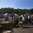 Angelenos head to flea markets year-round in search of rare, vintage finds. I must admit, my love of thrift stores waned around the time I was 25. As thrift stores […]
