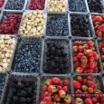 TweetRipe strawberries, decadent chocolate and gourmet cheese… these are just a few of the sensual foods lining the aisles of Montreal's Jean-Talon Market. One of North America's largest outdoor markets,...