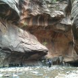 TweetIf you have the chance to visit Zion National Park, make sure to plan a day around hiking the Narrows, one of the most spectacular and unique hikes you'll find...