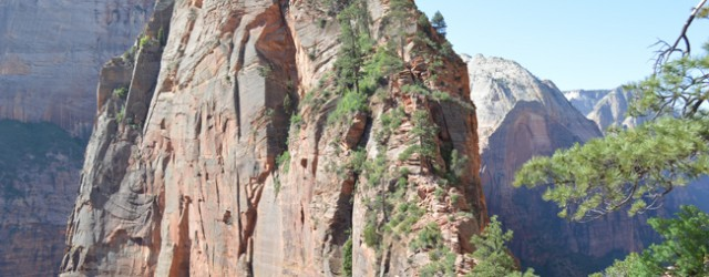 There's a reason Angel's Landing is the most famous hike in Zion National Park. This stunning (and at times terrifying) 5-mile trail climbs 1,200 feet up a sheer rock face–with...