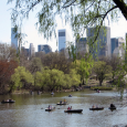 When you think of Manhattan, jogging trails probably aren't top of mind. But Manhattan offers many scenic running paths – in parks, up and down the waterfronts and on islands […]
