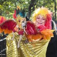 Hundreds of adorable pooches descended on New York City's Tompkins Square Park yesterday for the 23rd annual Halloween Dog Parade. This East Village costume party is a chance for canines […]