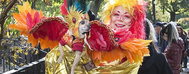 Hundreds of adorable pooches descended on New York City's Tompkins Square Park yesterday for the 23rd annual Halloween Dog Parade. This East Village costume party is a chance for canines...